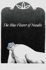 The Blue Flower of Novalis